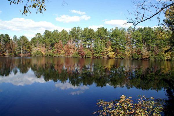 47 Deer Ridge Artesian Lakes Property