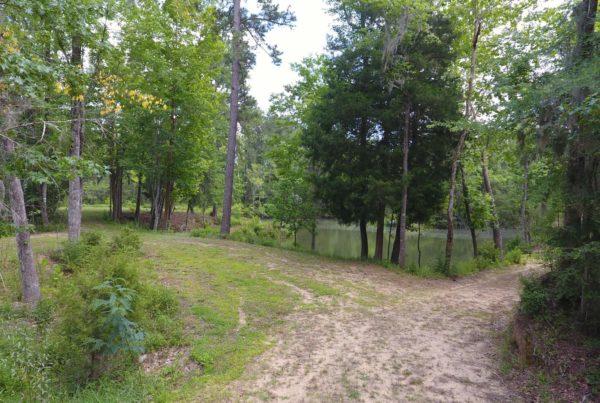98 Cedar Ridge