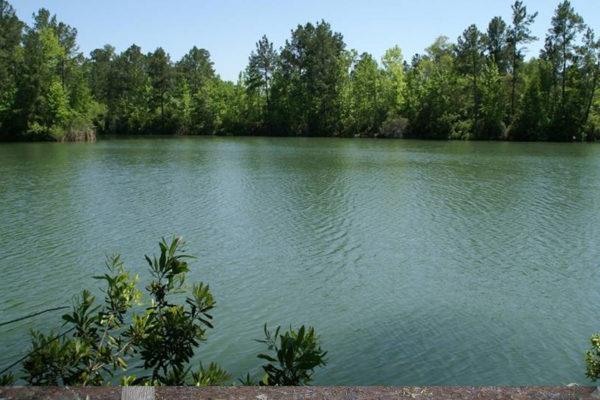 Site-21-lake-view